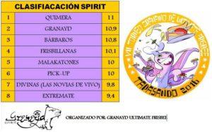 Clasificación del spirit